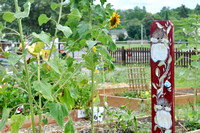 Fox Lake Community Garden 2017 10
